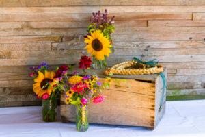 Make Your Wedding Environmentally Friendly wedding video Kilkenny