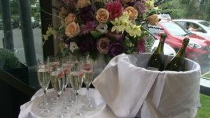Clonmel Park Hotel | Wedding video Kilkenny
